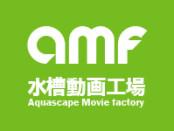 amf_mini